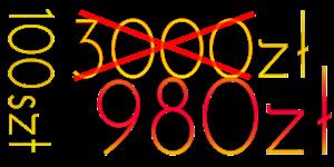 idealnacena100x980